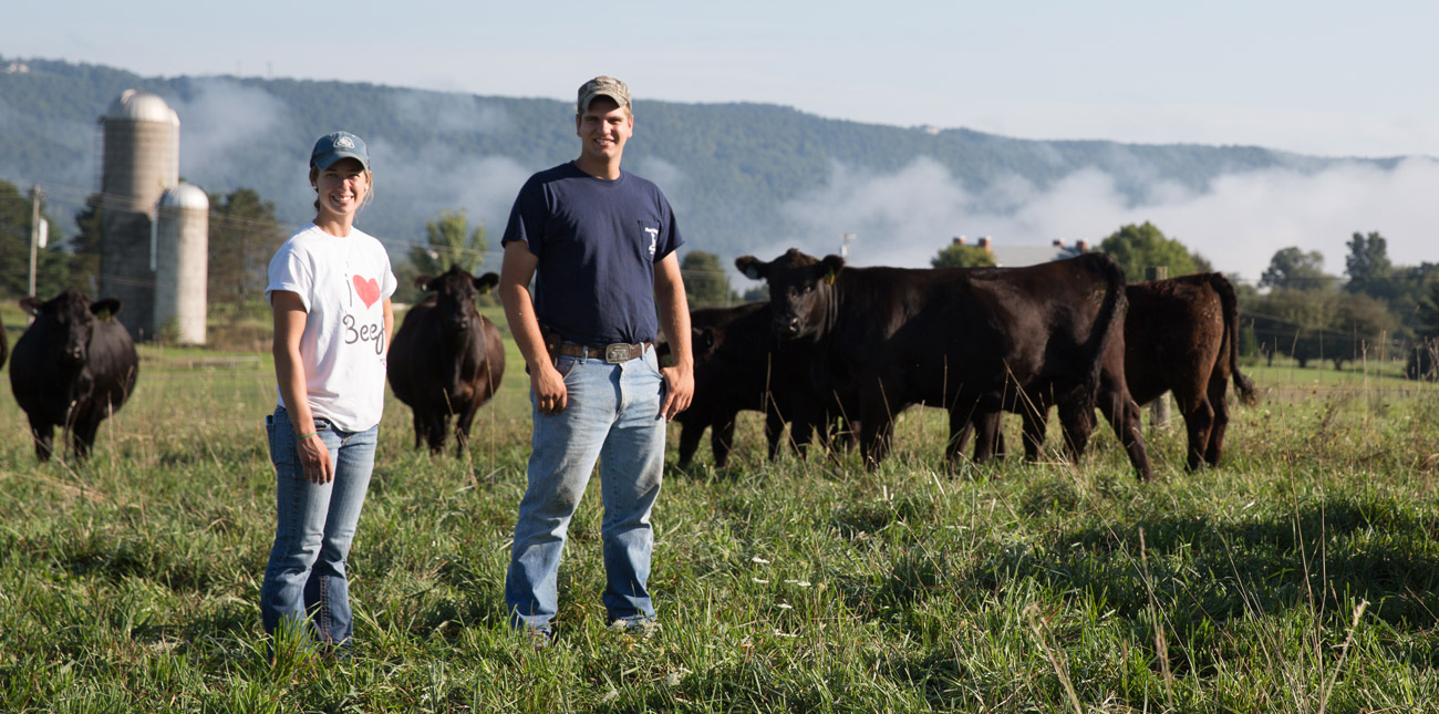 Two students in a pasture with beef cattle.