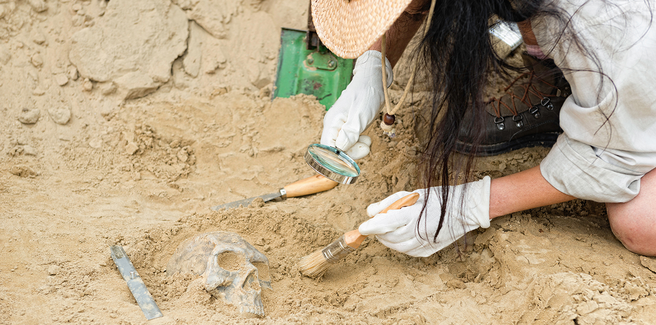 Anthropolgist uncovering human remains during a dig