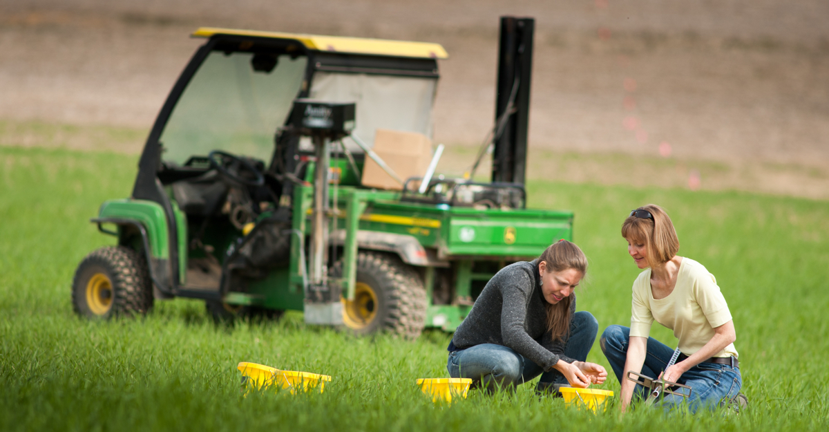 An Agronomy graduate student and her advisor in a field data collection photo.