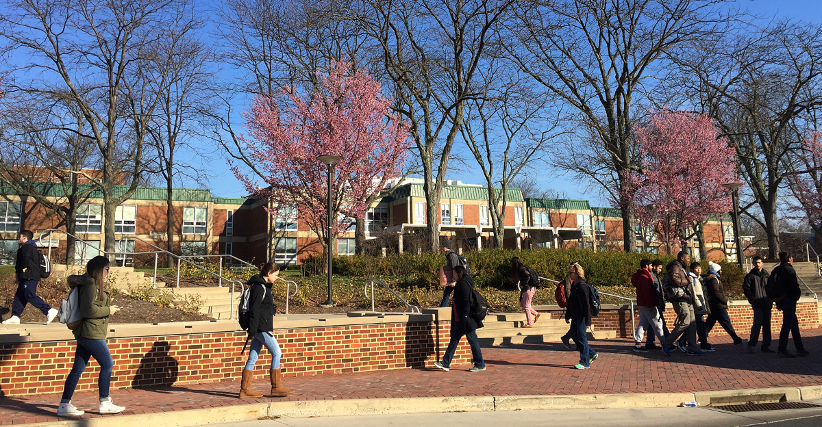 Students walking in front of the College of Education in the spring