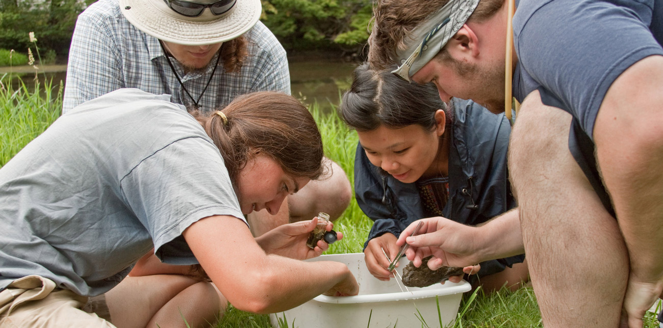 Students streamside sorting aquatic insects
