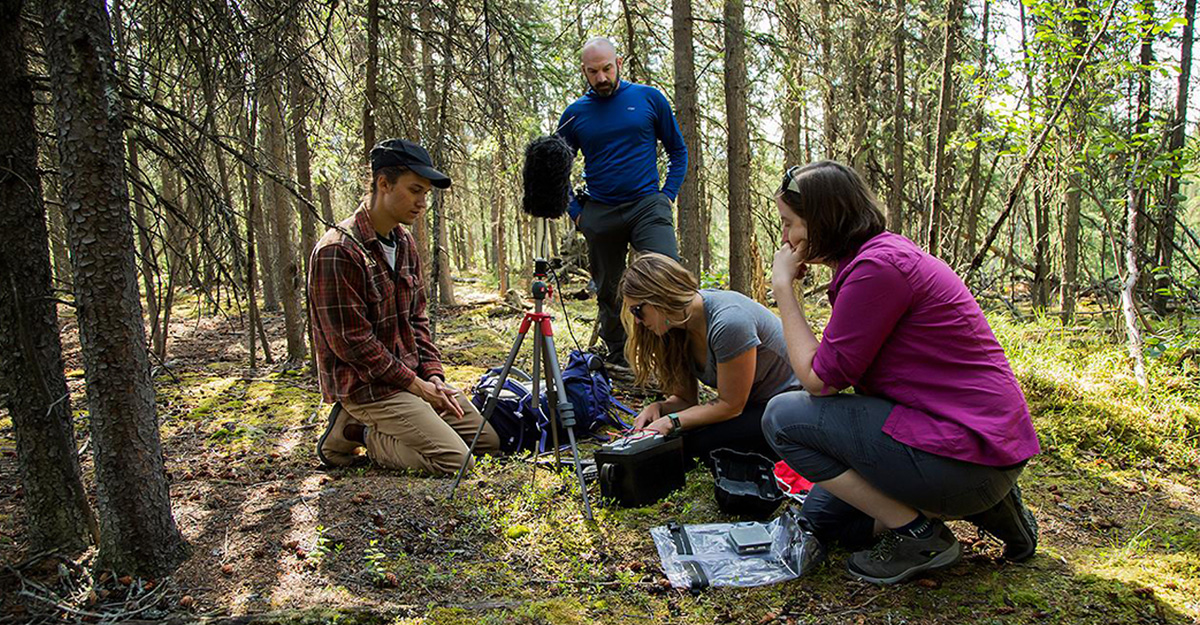Four people (3 students and 1 instructor) are in the woods with equiptment recording data.