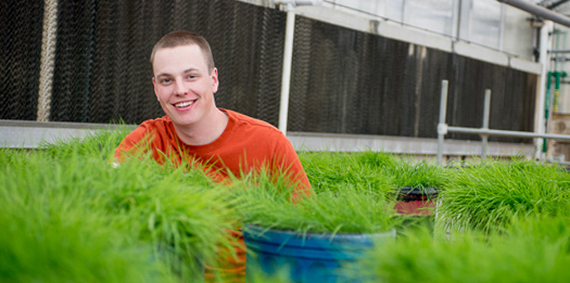 Student in greenhouse sitting behind pots of turf