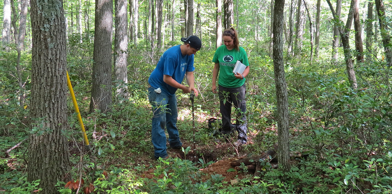 Two students testing forest soil